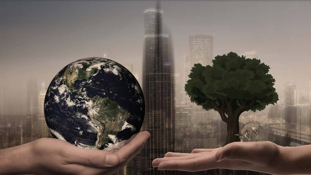Nachhaltigkeit von Logistikimmobilien: Hebel für mehr Effizienz im Betrieb