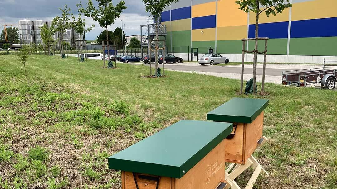 Pfenning logistics bietet Bienen und Turmfalken ein Zuhause